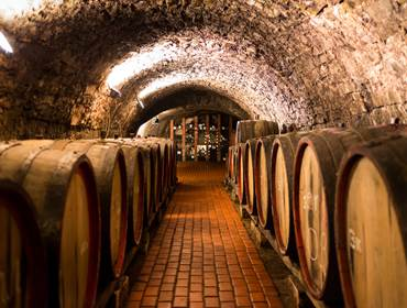 Port Wine cellars