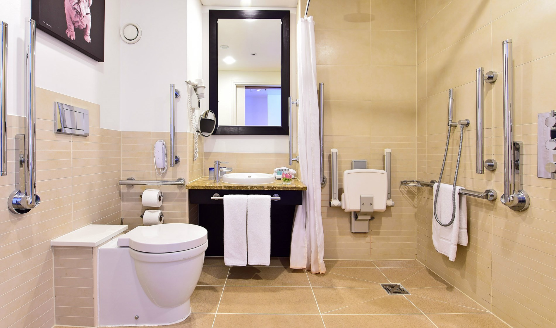 Luxury Hotel in London Deluxe Disability Access Room