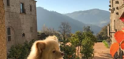 Pousada Mosteiro Amares - @dom_spitz