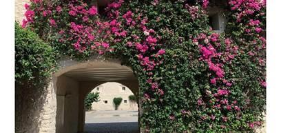 Pousada Convento Tavira - @chloerahall