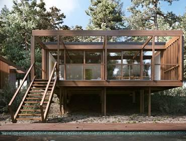 Tree Villa